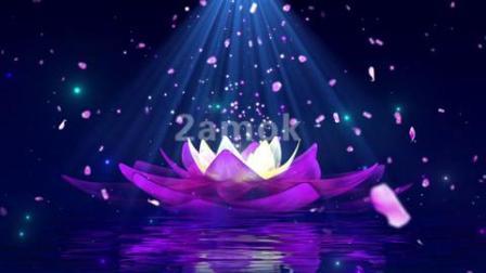 莲花花瓣水面舞台-高清视频素材网站-凌晨两点素材网