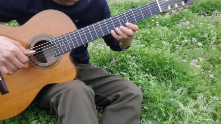 张家界丑石吉他独奏《爱情的故事》.mp4