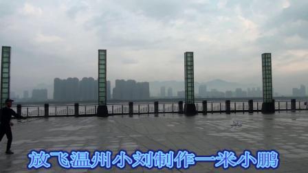 放飞温州小刘制作一米小鹏