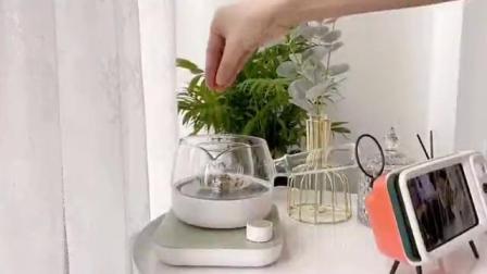 如何选择煮茶器?这款煮茶器不仅颜值高,还操作简单,实用性很强