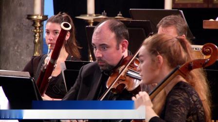 Sandro Compagnon (France) - Concertino da Camera by Jacques Ibert (Dinant 2019)