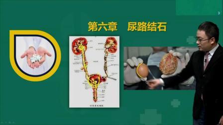 执业助理医师考试视频2020年泌尿系统