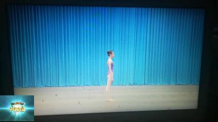 中国舞蹈技术技巧基本功素质能力测评少儿基础训练师资班培训教材之侧手翻,单一侧落