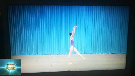 中国舞蹈技术技巧基本功素质能力测评少儿基础训练师资班培训教材之侧手翻,单一正落