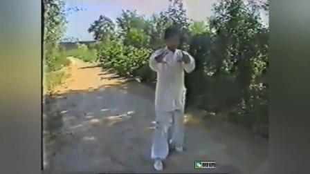 早年大成拳教学视频,不多见的资料