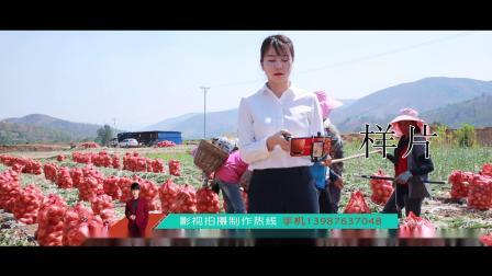 云南省农村信用社楚雄分社助销元谋洋葱销售2—张怀斌.mp4