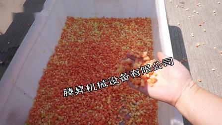 Q180腾昇食品机械蔬果切丁机大型高产土豆木瓜切丁