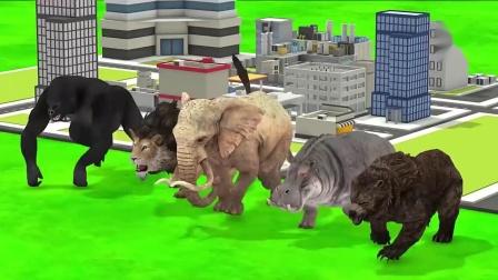 大猩猩、大狮子、大象、犀牛和黑熊在城市乱跑乱叫.mp4