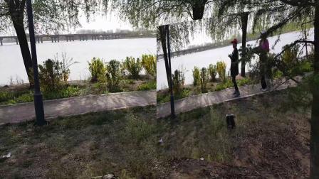 二0二0年四月四号沂河清明节一日游
