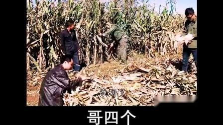 导演浩哥 二龙湖浩哥的经典苞米地劈苞米