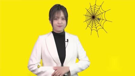 引领右脑【奇趣漂流池】:为什么蜘蛛不会被自己的网粘住
