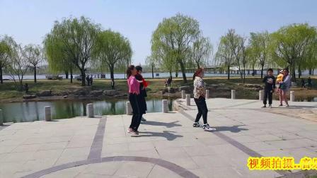郑霞沂河广场舞【黄土高坡】