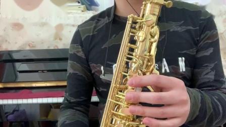 【桥边姑娘】台湾萨尔特萨克斯SP 6600 中音 伴奏版
