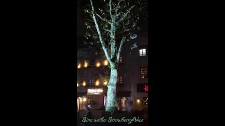 【Strawberry Alice】摩登思南季IV:奇境思南·光影之旅:思南生命之树,2019-12-16 上海思南公馆