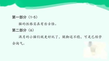 1-四年级语文第四单元第13课《猫》(第一课时)(1)