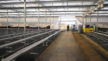 Film greenhouse with cocopeat planting system