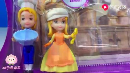 迪士尼公主玩具:苏菲亚和安柏、詹姆斯为什么要一起做蛋糕呢?.mp4