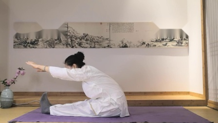 膀胱经拉升示范 禅修瑜伽