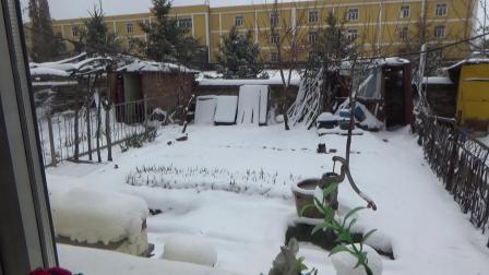 阳春四月天、瑞雪更可观