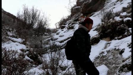 桑巴巴德—《走近雪域幽灵——雪豹》《微纪录片》高清版