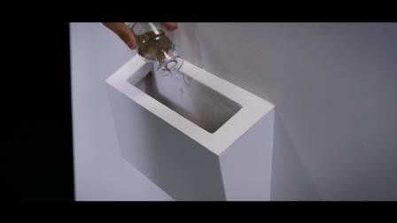 OnePlus 8 系列视频_花朵.mp4