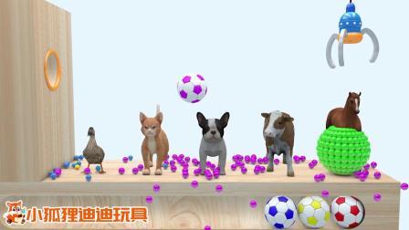 动物们头上掉下了5种颜色的足球,为何会把波波球砸碎了呢?.mp4