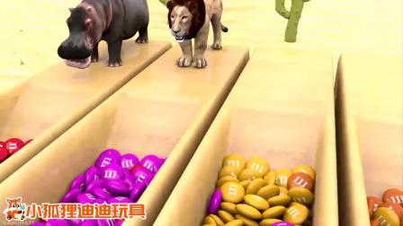 超有趣!老虎、狮子、斑马、河马进入巧克力豆池变5种颜色!.mp4