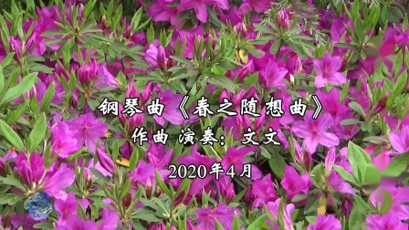 钢琴曲《春之随想曲》2020-05-01