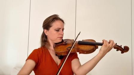 Bach - Chaconne at Home for 14 violinists