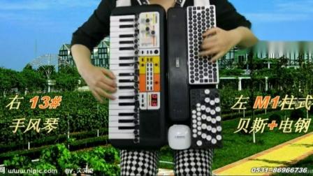 罗舎人酒庄 背挎手风琴伴式电子琴合成器演示系