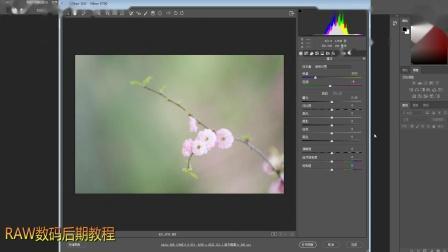 摄影-9RAW数码后期教程.mp4