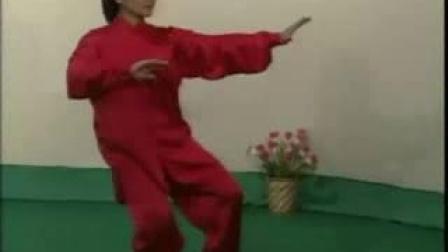 24式太极拳 (苏韧峰)