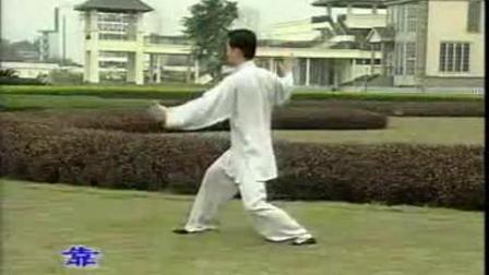 陈氏十三式太极拳(王二平)