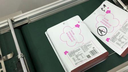 蜂蜜杨梅食品袋 科恩分页机厂家 喷码标识品质把控(重张检测)(视觉检测OCR)