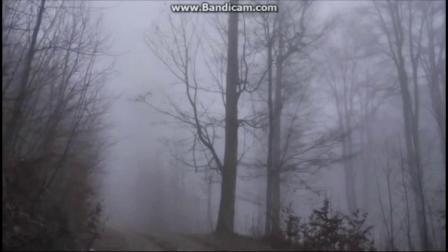 音画欣赏 雾中风景
