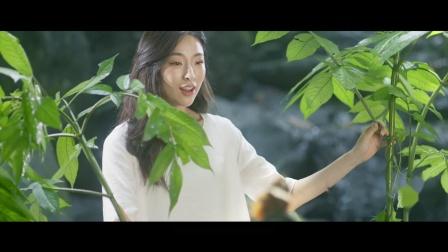 谷城县五山镇旅游宣传片