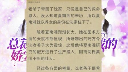 小说《总裁的娇宠妻》沈璃月傅司绝全文免费阅读
