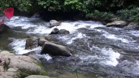 广西通灵  大峡谷瀑布  ...