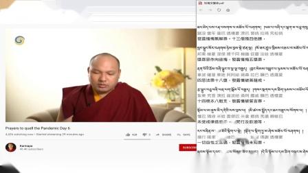 """大宝法王2020.04.23""""祛病消灾""""念诵-<极乐净土愿文>中文同步"""