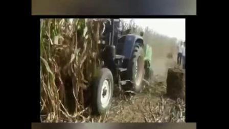 SH-165型玉米秸秆粉碎打捆机田间工作视频