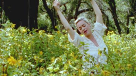 [杨晃]美国女歌手水果姐Katy Perry 全新单曲Daisies
