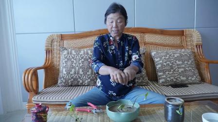 碗莲种藕种植技巧