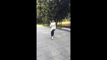 陈式太极拳31式--苏华祥创编