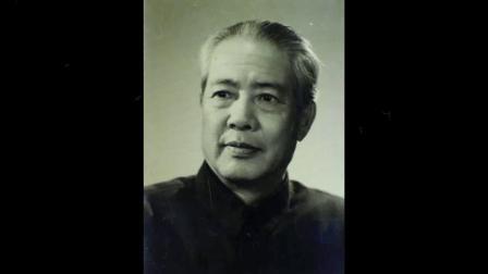 荫中鸟-刘管乐.mp4