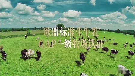 0001.哔哩哔哩-[内地广告](2020)每日鲜语鲜牛奶(16:9)
