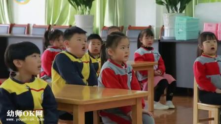 大班科学《奇妙的影子》公开课视频+PPT课件教案 幼师OK网