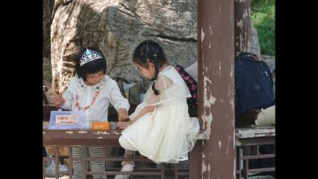 拍鸟日记,在玉渊潭,2020,05,28