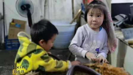 第30集:云南正宗古法巧家小碗红糖熬制流程,5岁小孩吃糖很香