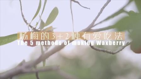 「厨娘物语」杨梅才是入夏必备吖!今天来教大家清甜杨梅酒 ~