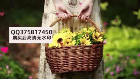 窗外花开-李普1920X1080视频素材4643209.mp4